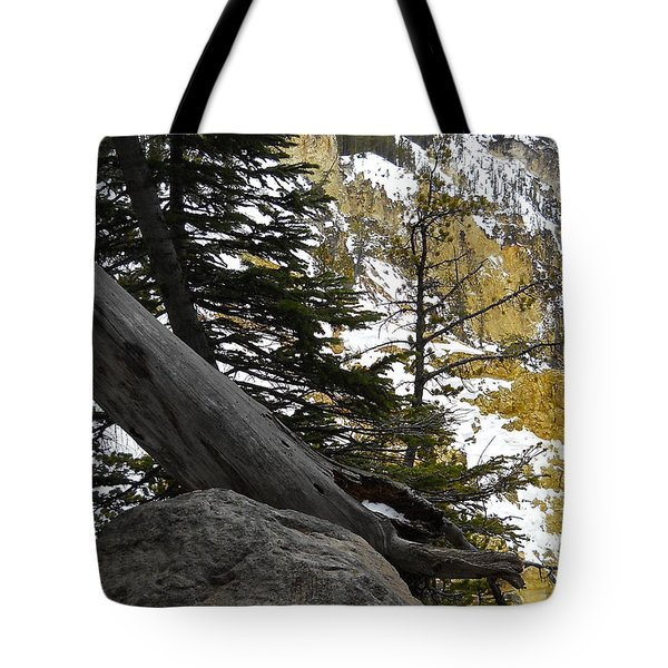 Tote Bag featuring the photograph Composition At Lower Falls by Michele Myers