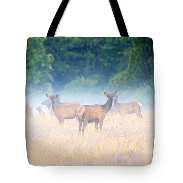 Concealed By The Fog Tote Bag