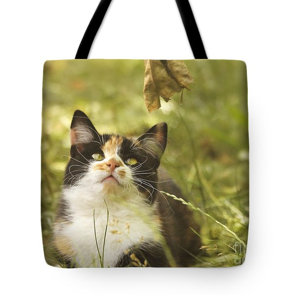Concentration Tote Bag by Jutta Maria Pusl
