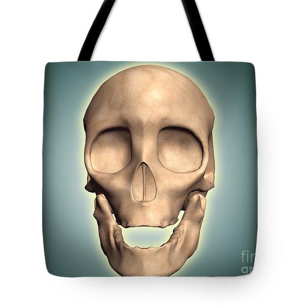 Conceptual Image Of Human Skull, Front Tote Bag