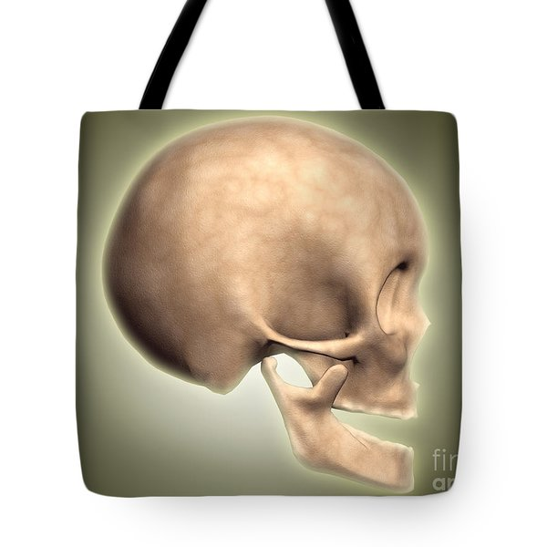 Conceptual Image Of Human Skull, Side Tote Bag by Stocktrek Images