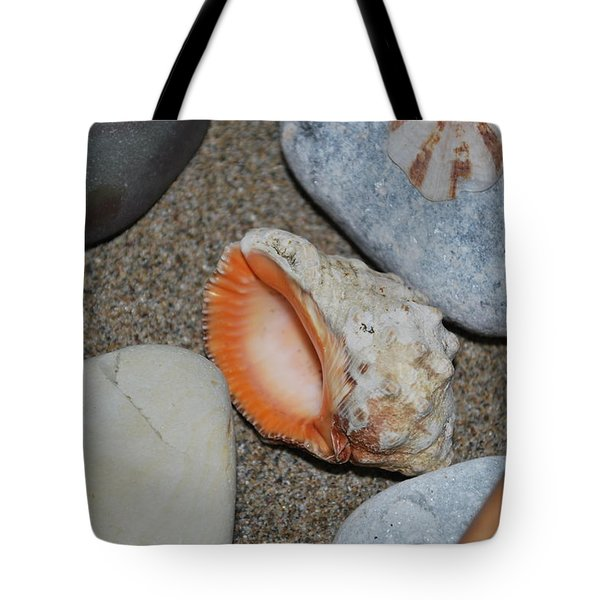 Tote Bag featuring the photograph Conch 1 by George Katechis
