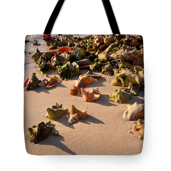 Conch Collection Tote Bag by Jola Martysz