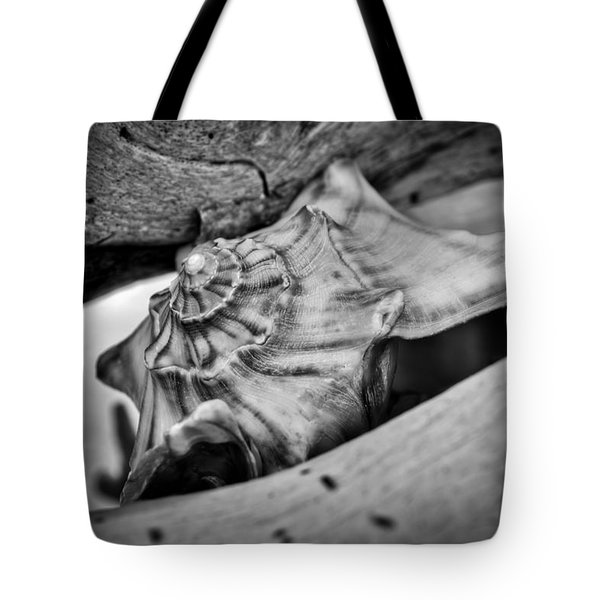 Conch Shell Two Tote Bag