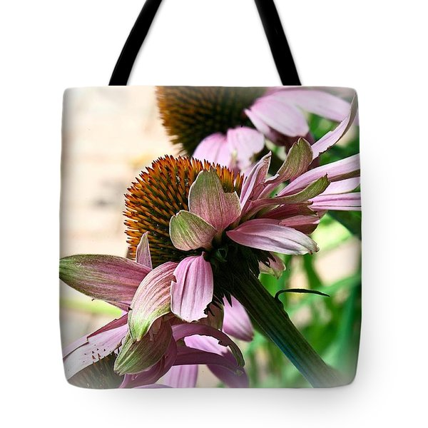 Cone Flower 6 Tote Bag
