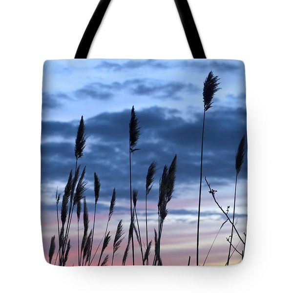 Connecticut Sunset With Reeds Series 4 Tote Bag