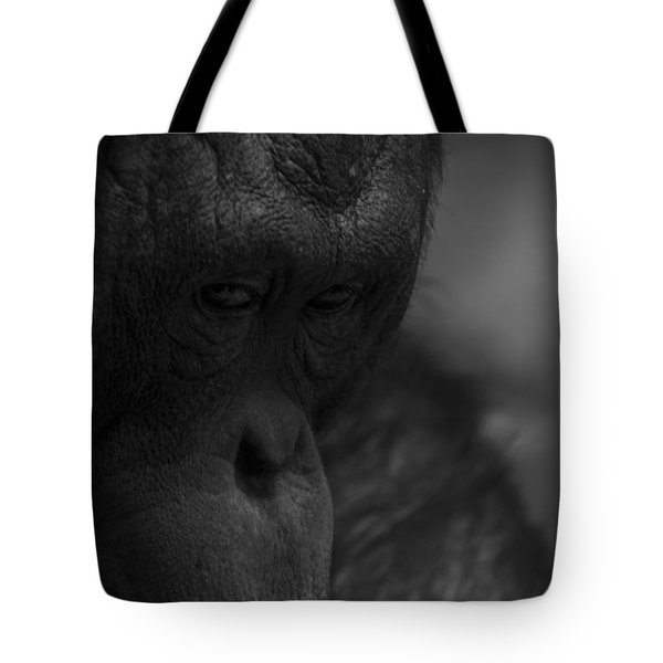 Contemplating Orangutan Tote Bag