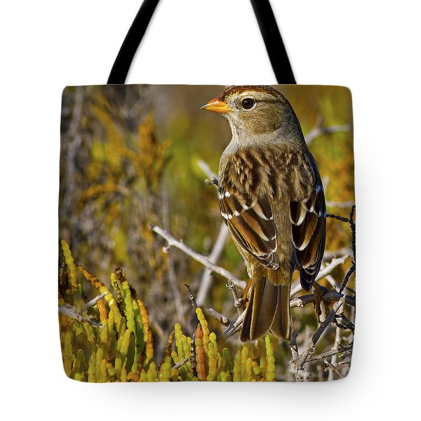 Tote Bag featuring the photograph Contemplating The Day by Gary Holmes