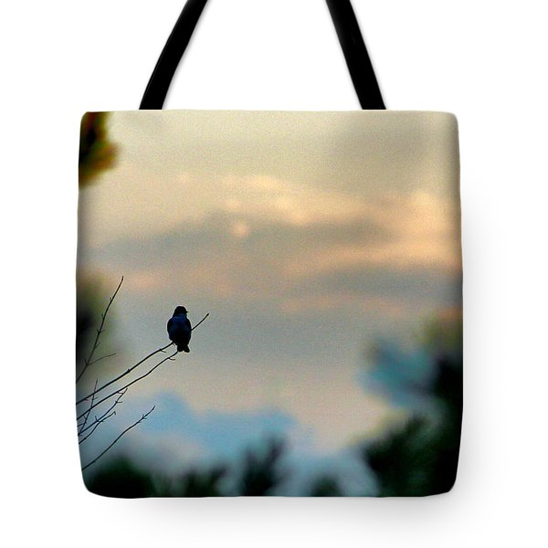 Contemplation Tote Bag by Bruce Patrick Smith