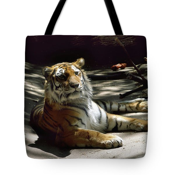 Content Tiger Tote Bag