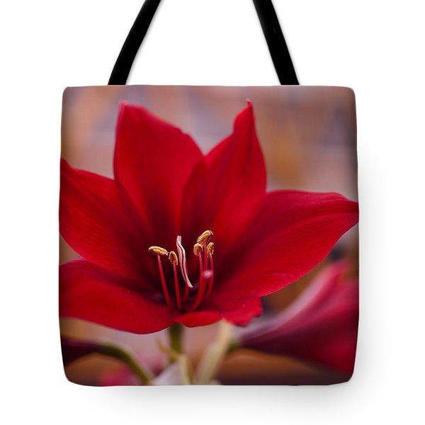 Content Tropics Tote Bag