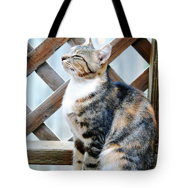 Contented Tote Bag