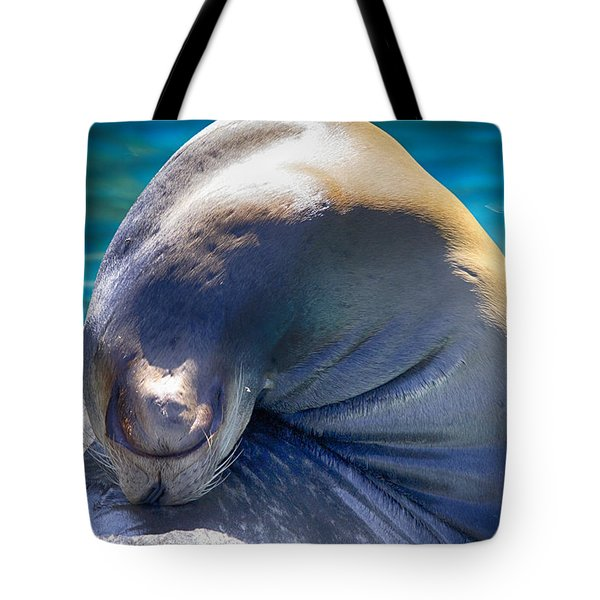 Contortionist Tote Bag by Douglas Barnard