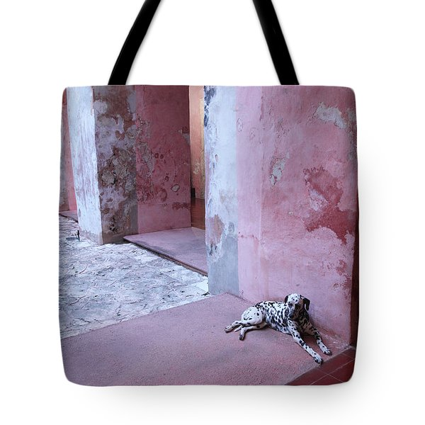 Convent Dog Tote Bag