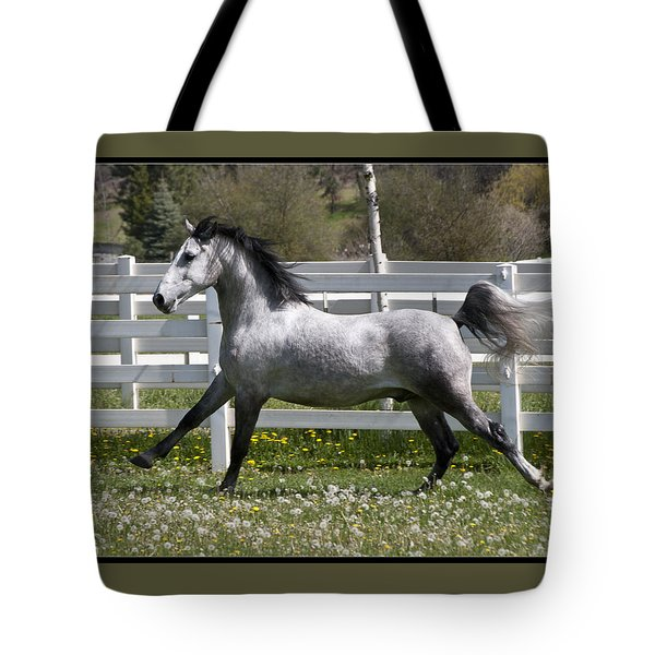 Tote Bag featuring the photograph Conversano Catalina IIi D4000 by Wes and Dotty Weber