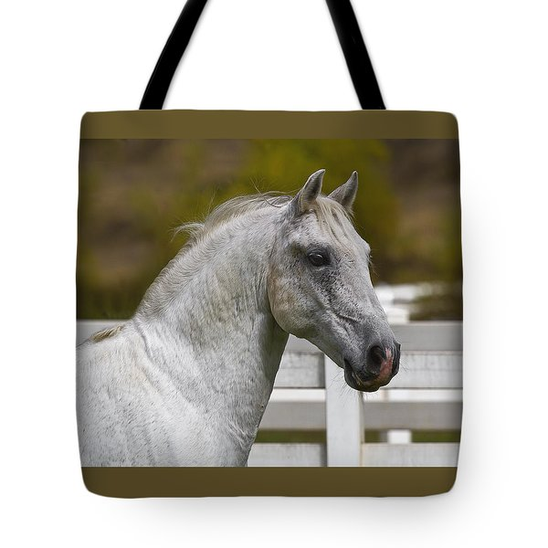 Tote Bag featuring the photograph Conversano Mima D2724 by Wes and Dotty Weber