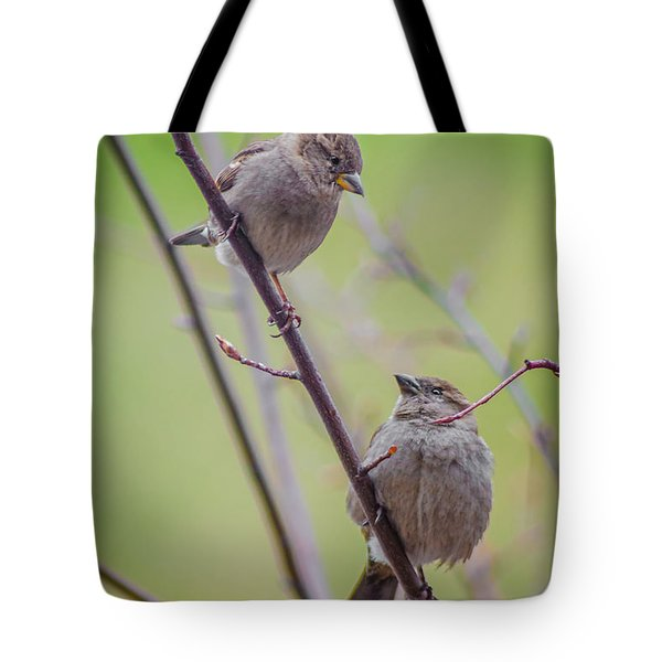 Conversation Of The Day Tote Bag