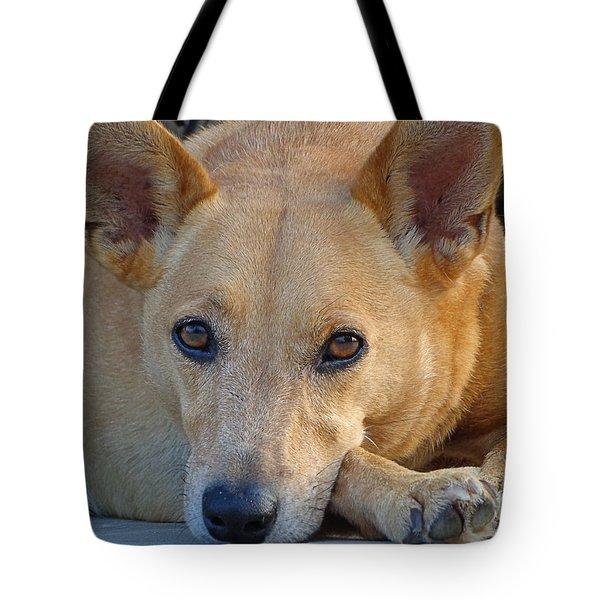 Cookie Chillin'  Tote Bag