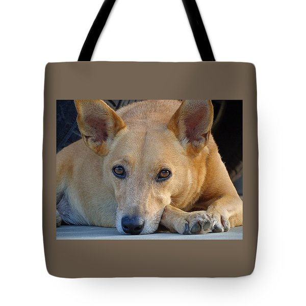Cookie Chillin'  Tote Bag