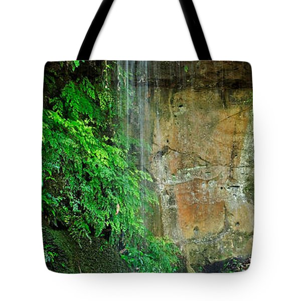 Cool And Refreshing Tote Bag by Kaye Menner