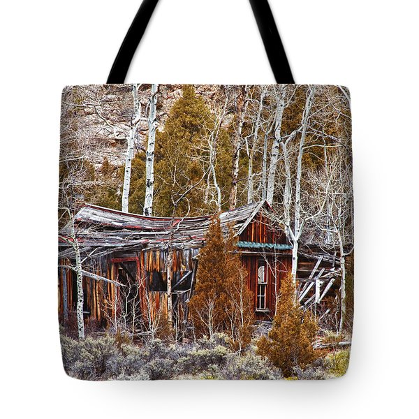 Cool Colorado Rural Rustic Rundown Rocky Mountain Cabin  Tote Bag by James BO  Insogna