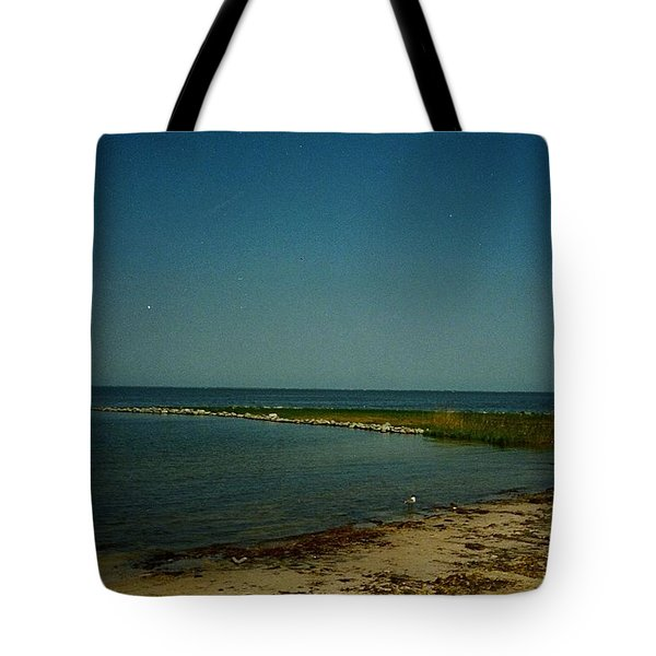 Tote Bag featuring the photograph Cool Day For A Swim by Amazing Photographs AKA Christian Wilson