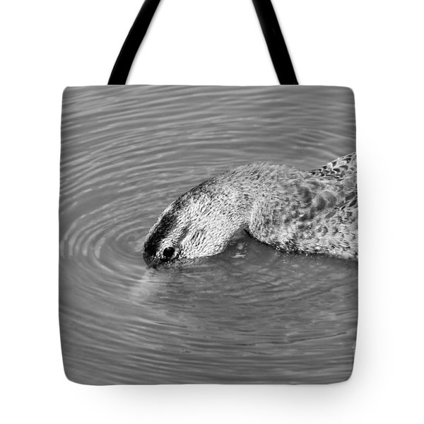 Tote Bag featuring the photograph Cool Dip by Anita Oakley