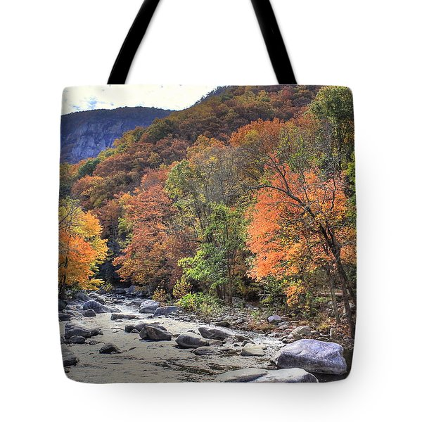Cool Mountain Stream Tote Bag