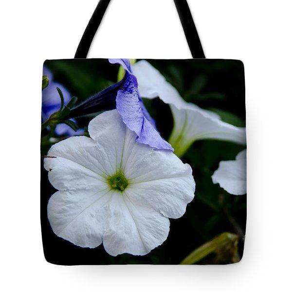 Cool Summer Petunias Tote Bag by Wilma  Birdwell