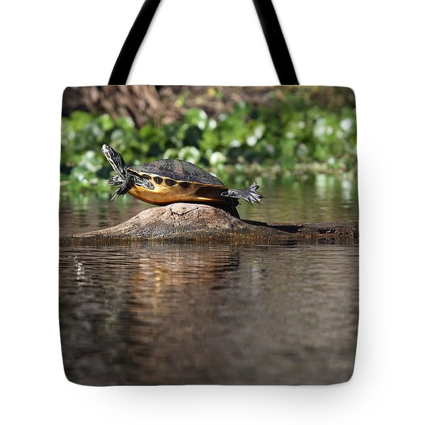 Tote Bag featuring the photograph Cooter On Alligator Log by Paul Rebmann