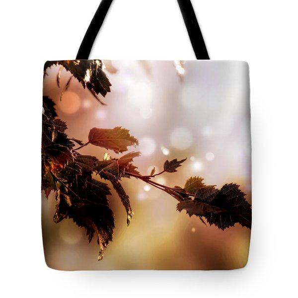 Copper Birch Tote Bag