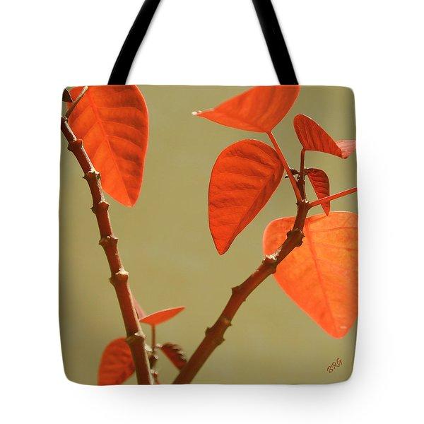 Copper Plant Tote Bag by Ben and Raisa Gertsberg