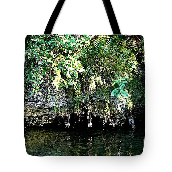 Coral Bluffs Tote Bag