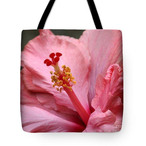 Coral Hibiscus Tote Bag by Sabrina L Ryan