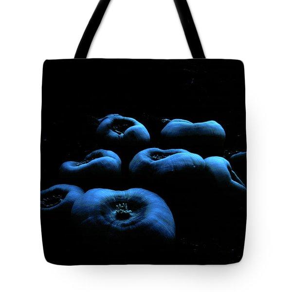 Corallimorpharia Tote Bag