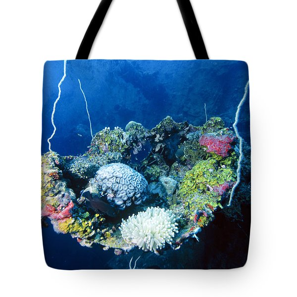 Corals On Ship Wreck Tote Bag