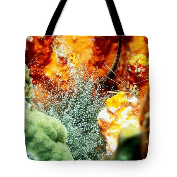 Tote Bag featuring the photograph Corkscrew Anemone Grove by Amy McDaniel