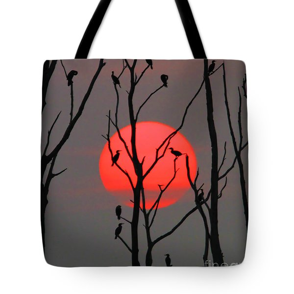 Cormorants At Sunrise Tote Bag by Roger Becker