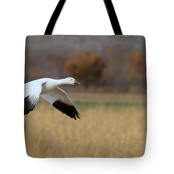 Tote Bag featuring the photograph Corn And Geese by Ruth Jolly