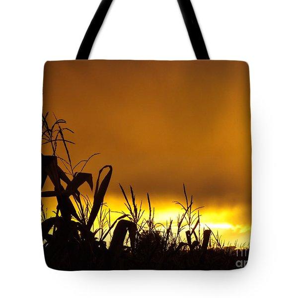 Corn At Sunset Tote Bag