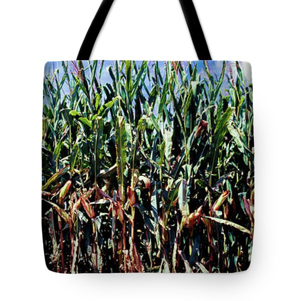 Corn Crop In A Field, Amish Country Tote Bag
