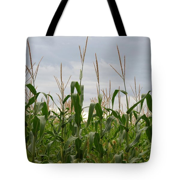 Tote Bag featuring the photograph Corn Field by Laurel Powell