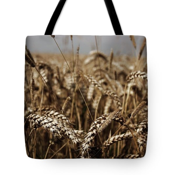 Tote Bag featuring the photograph Corn Field by Vicki Spindler