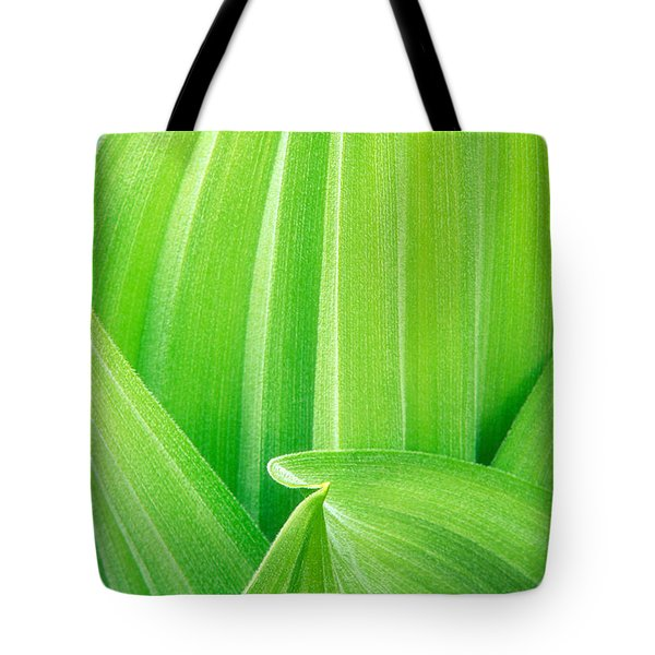 Tote Bag featuring the photograph Corn Lily Leaf Detail Yosemite Np California by Dave Welling