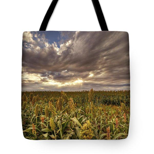 Cornfield Sunset  Tote Bag by Saija  Lehtonen