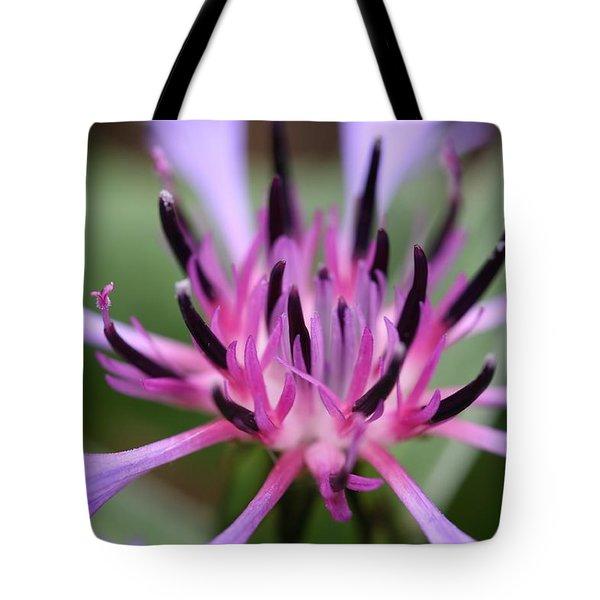 Cornflower Bloom Tote Bag by Mark Severn