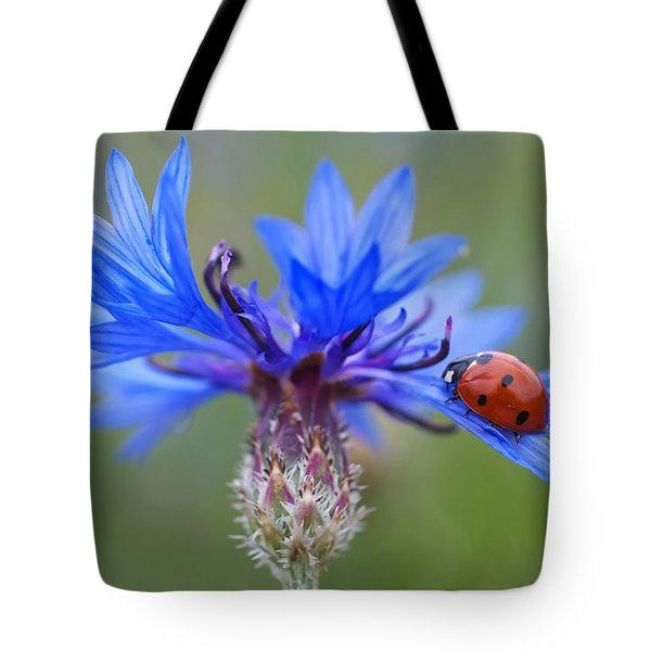 Tote Bag featuring the photograph Cornflower Ladybug Siebenpunkt Blue Red Flower by Paul Fearn