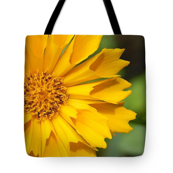 Tote Bag featuring the photograph Coryopsis Auriculata - Coryopsis Jethro Tull by Nature and Wildlife Photography