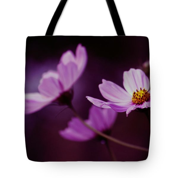 Tote Bag featuring the photograph Cosmo After Glow by Kay Novy