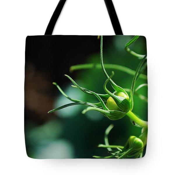 #cosmos Tote Bag by Becky Furgason
